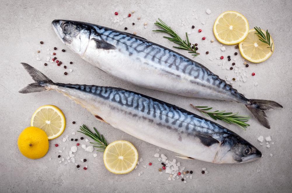 鯖の栄養や効果