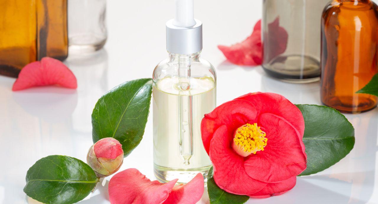 椿油は頭皮に使える?特徴や効果、おすすめの使い方についてご紹介