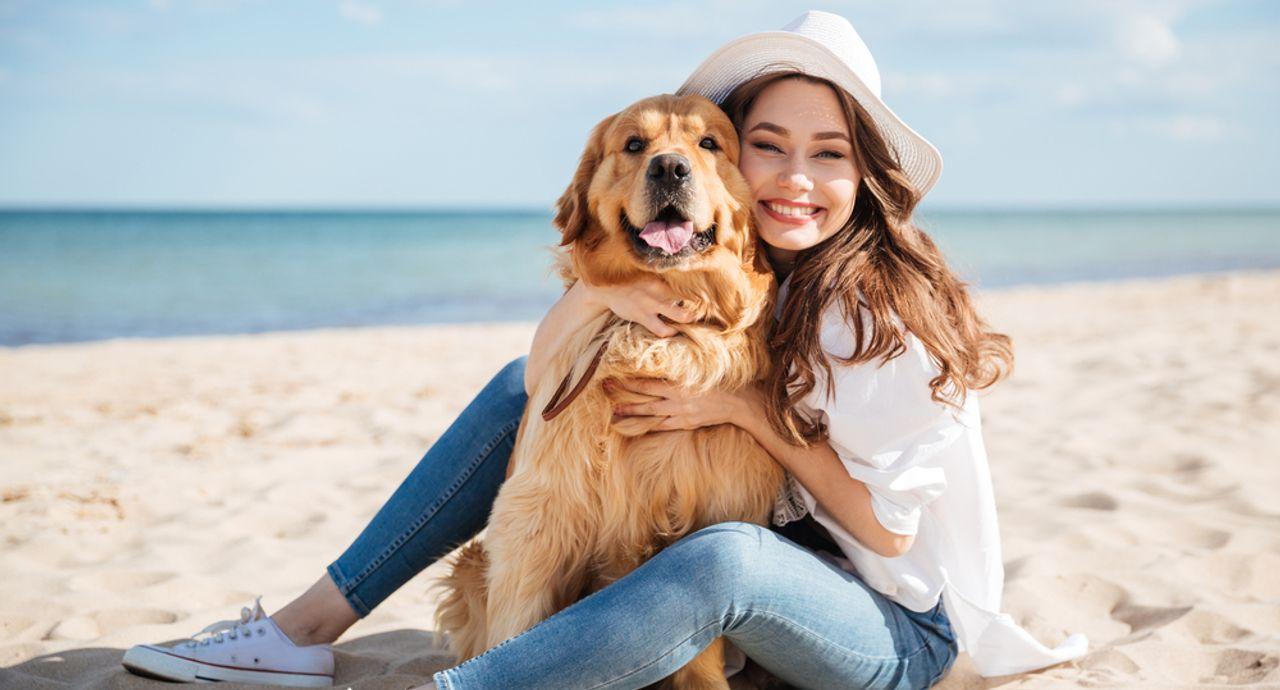 都内の犬カフェ16選!可愛いわんちゃんたちに癒されよう