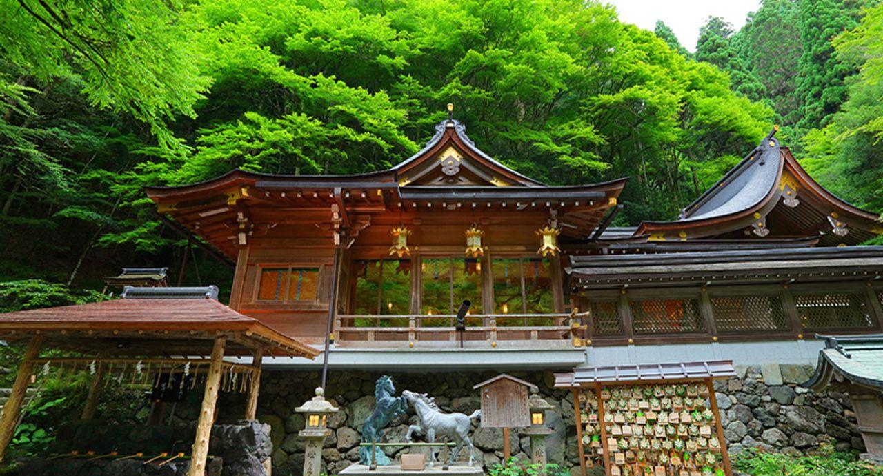 2019年こそ恋愛成就!「神社・お寺」開運パワースポット-関西編
