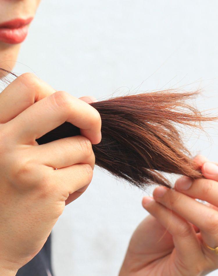 枝毛の原因とは?対処法や対策、おすすめのシャンプーをご紹介