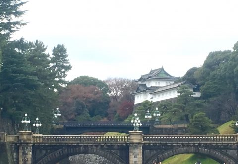千代田区皇居外苑は多くの遺構とクロマツが象徴的な特別史跡江戸城跡