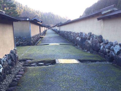 「あまりになにもない だから面白い」福井一乗谷で戦国の街を巡る