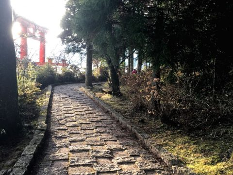 芦ノ湖に箱根旧街道石畳まで 箱根の自然に触れながら散策しませんか