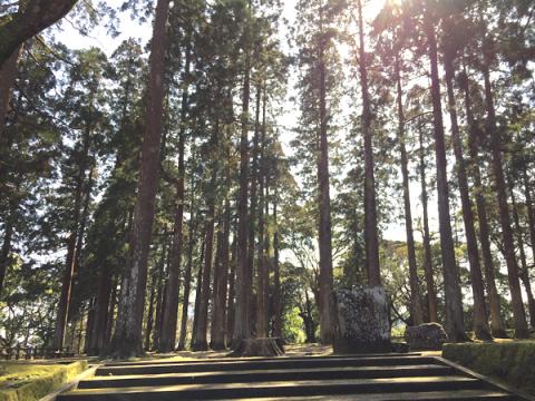 「松尾の丸」に隠された魅力と城跡内一の神秘的な場所「旧本丸跡」へ