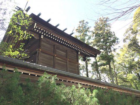 パワーみなぎる伊弉諾神社で国生み神話の由緒を辿り淡路の旬にも舌鼓