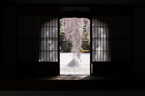 05_kyoto