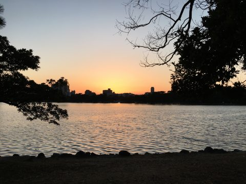 80年の歳月を刻む水と緑の大濠公園で心安らぐ時間と福岡屋台グルメ
