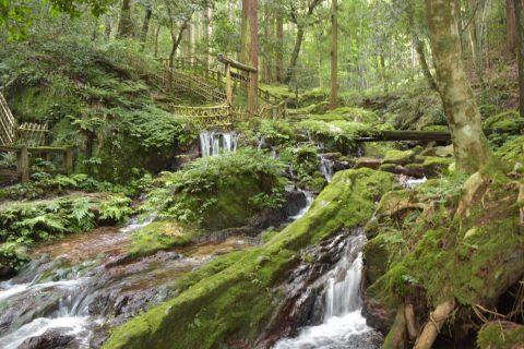 美しいまち福井若狭の源とは 名水百選「瓜割の滝」や名水を巡る