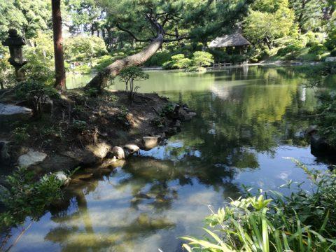 """広島の自然に触れる旅を満喫しませんか~現代での""""癒し""""の提案~"""
