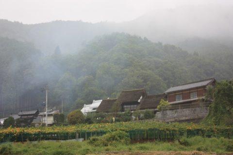 昭和の面影を残す重伝建 塩山下小田原上条集落でやすらぎの時間を