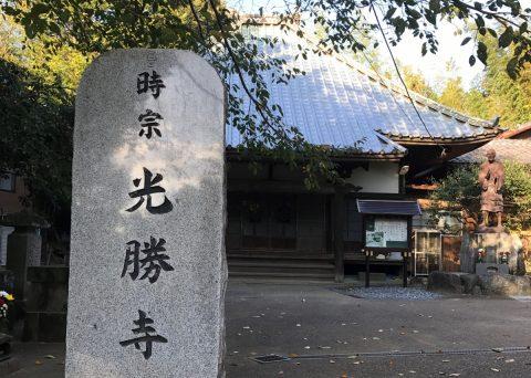 佐倉 臼井八景の歌を辿り 印旛沼を眺めながら先人の歌を感じる