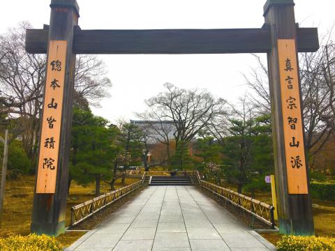 秀吉から愛息鶴松へ 京都の寺院祥雲禅寺から智積院まで歴史を辿ろう