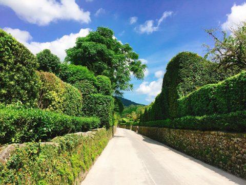 重伝建 防御力の高い家屋群が形成する知覧の美しき「庭園都市」とは