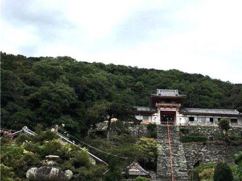 和歌浦で散策と言えばに来たら訪れたい!様々な歴史のある神社を訪れてみよう!