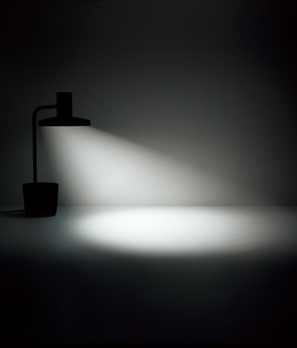 BALMUDA The Light / ブラック