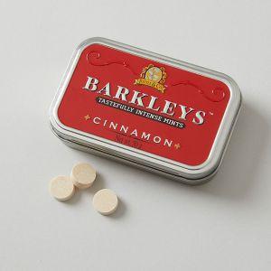 BARKLEYS/バークレイズ クラシックミント シナモン味