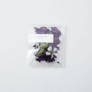 Blend-Moist ティーポット用 Shirakaba lab/シラカバ ラボ