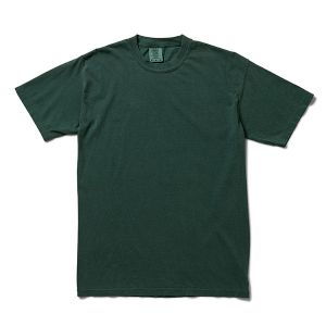 Comfort Colors アダルト リングスパンTシャツ S ブルースプルース