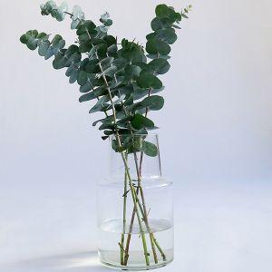 リューズガラス フラワーベース ロケート L