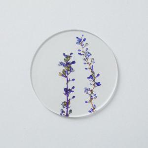 押し花 コースター リリオペ toumei/トウメイ