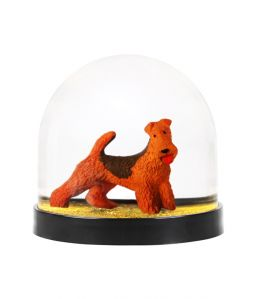 Wonder Ball Welsh Terrier