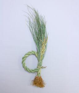 根付藁稲穂飾り 日の出 <L>