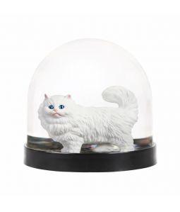 Wonderball cat