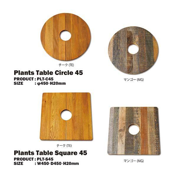 プランツテーブル サークル 45 チーク