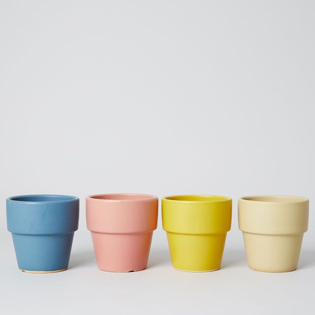 TODAY'S SPECIAL COLORED POT 4号 あんず