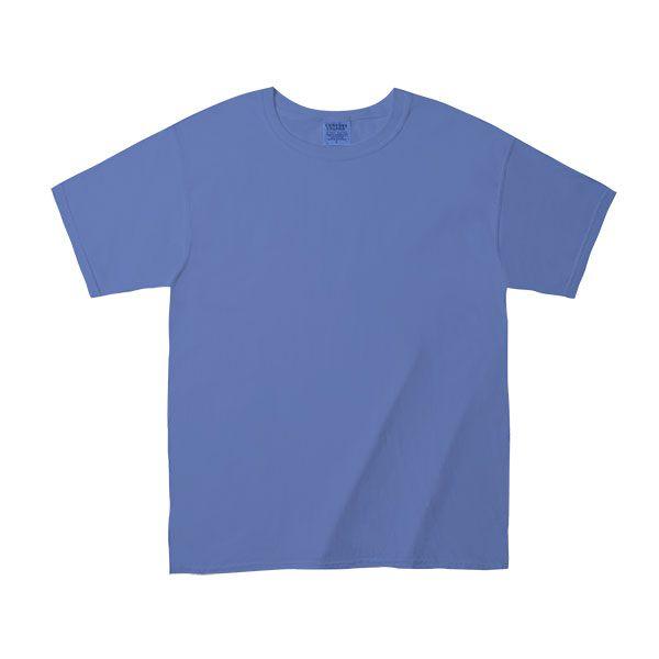 Comfort Colors / アダルトリングスパンTシャツ M フローブルー