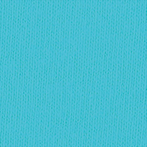 Comfort Colors / アダルトリングスパンTシャツ S ラグーンブルー