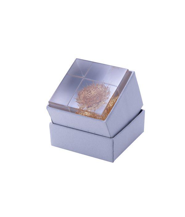 Sola cube / ケンタウレア
