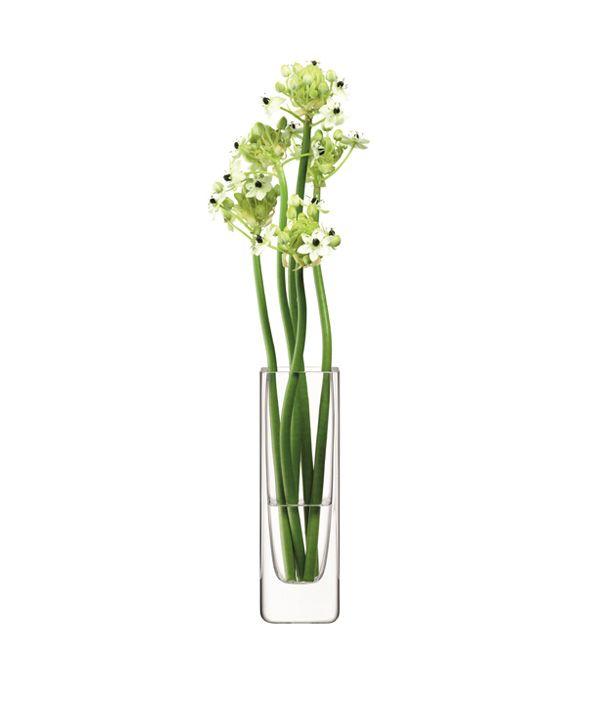 FLOWER Rectangular Stem Vase