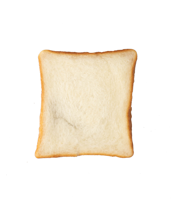 トースト / パンプシェード
