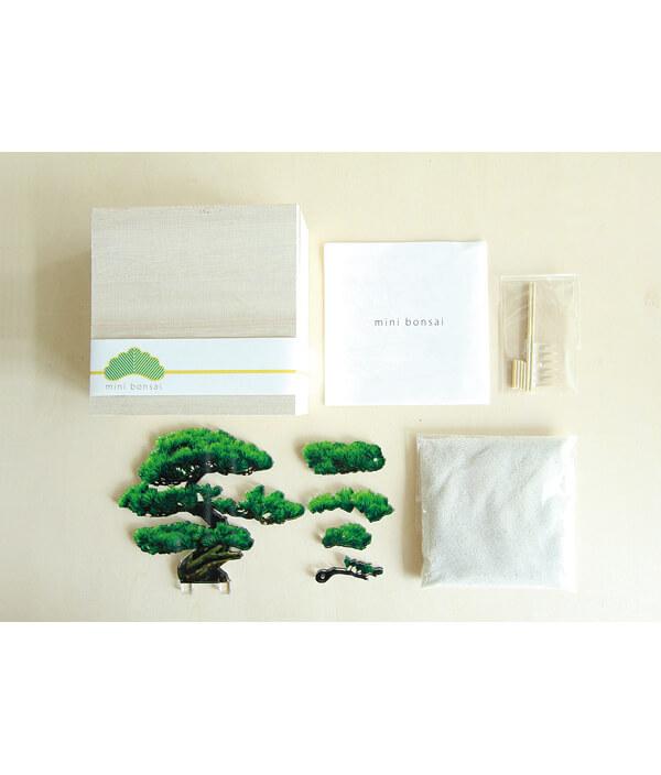 mini bonsai/もみじ