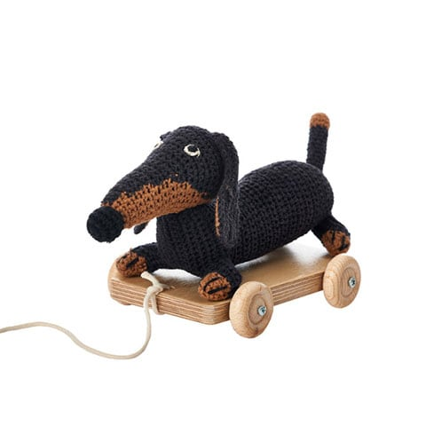 Small dachshund pul toy dog