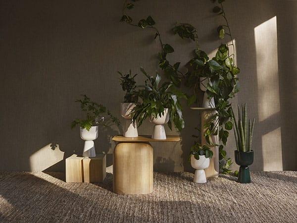 Nappula plant pot