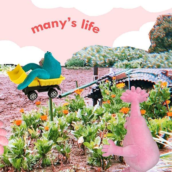 many's life