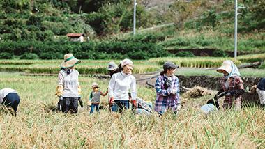 アーティザンイベント開催  Food Hub Project 9/6(金)~8(日)