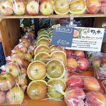 【EVENT】9月のお野菜マルシェ|国立店