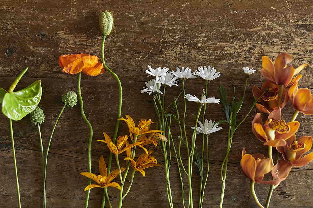 FLOWERS 好きな花を一輪