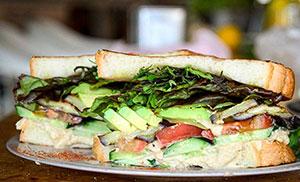 TODAY'S RECIPE フムスのサンドイッチ