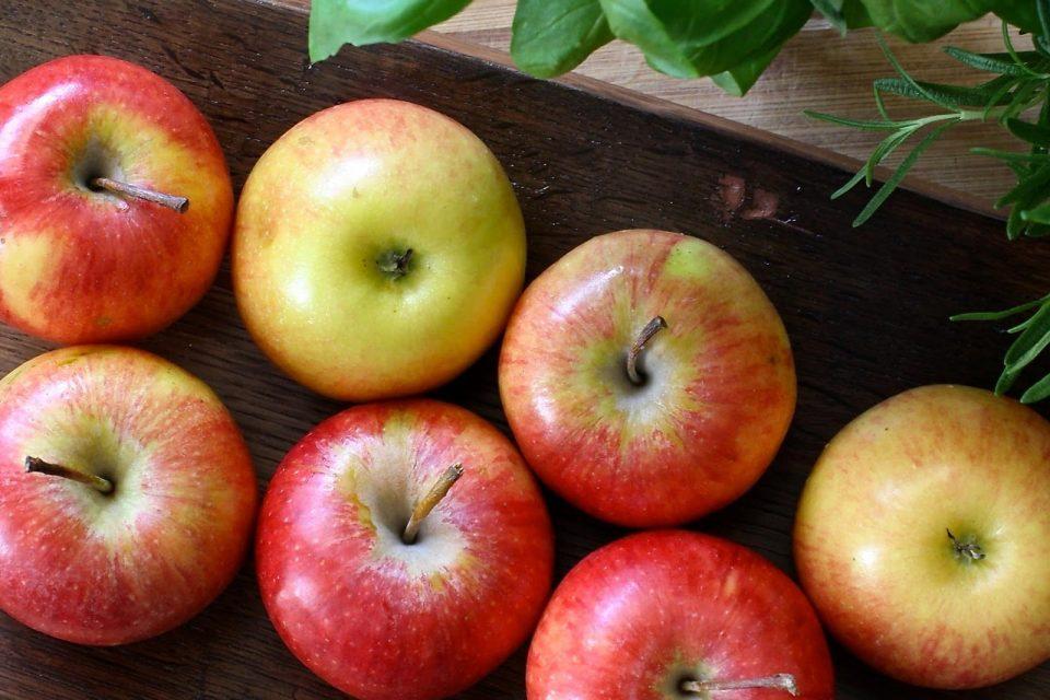 りんごのお話