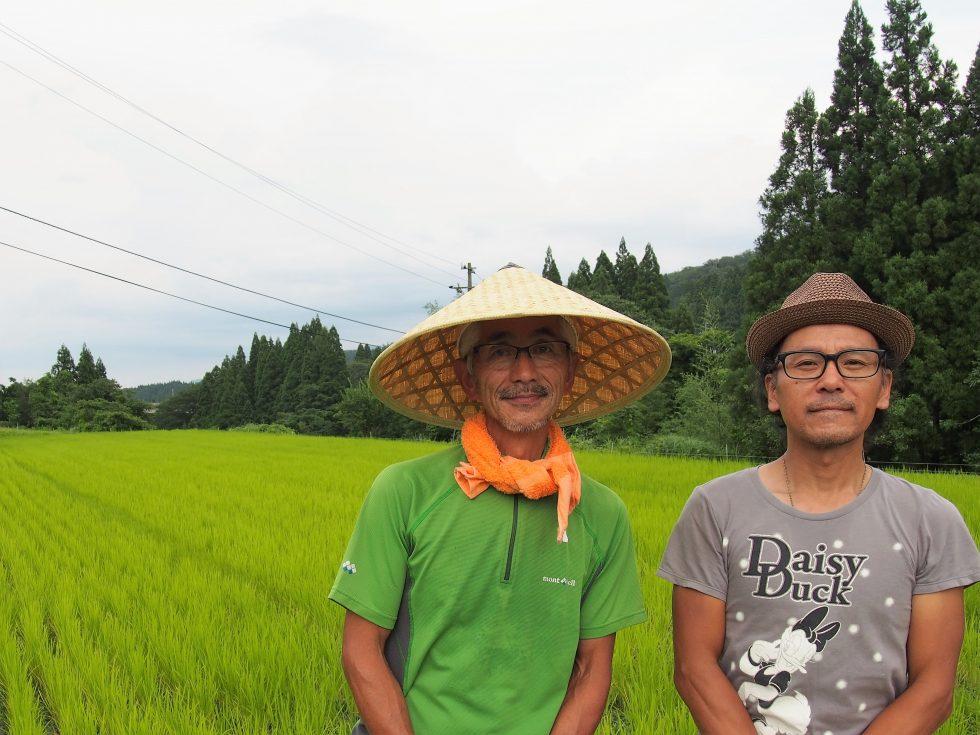 うねがしっかり見えるほどゆとりを持って植えられている稲。渡辺さんの笠姿もステキ