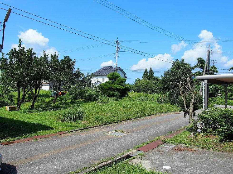家の周りは緑がいっぱい。空の面積も広い!