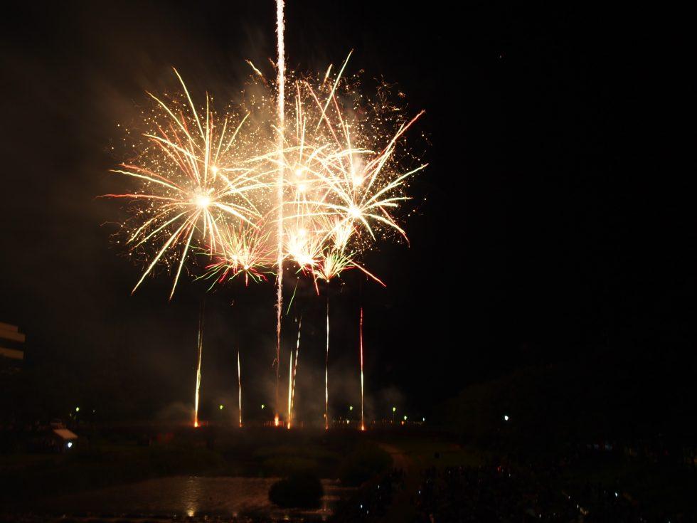 今年最初に見た花火はステキな思い出となりました