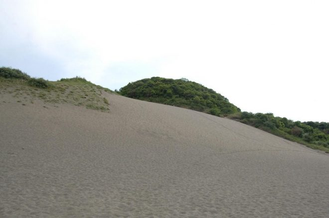 写真は、館山市にある砂山。360度、砂の眺めは絶景!そり滑りは最高!