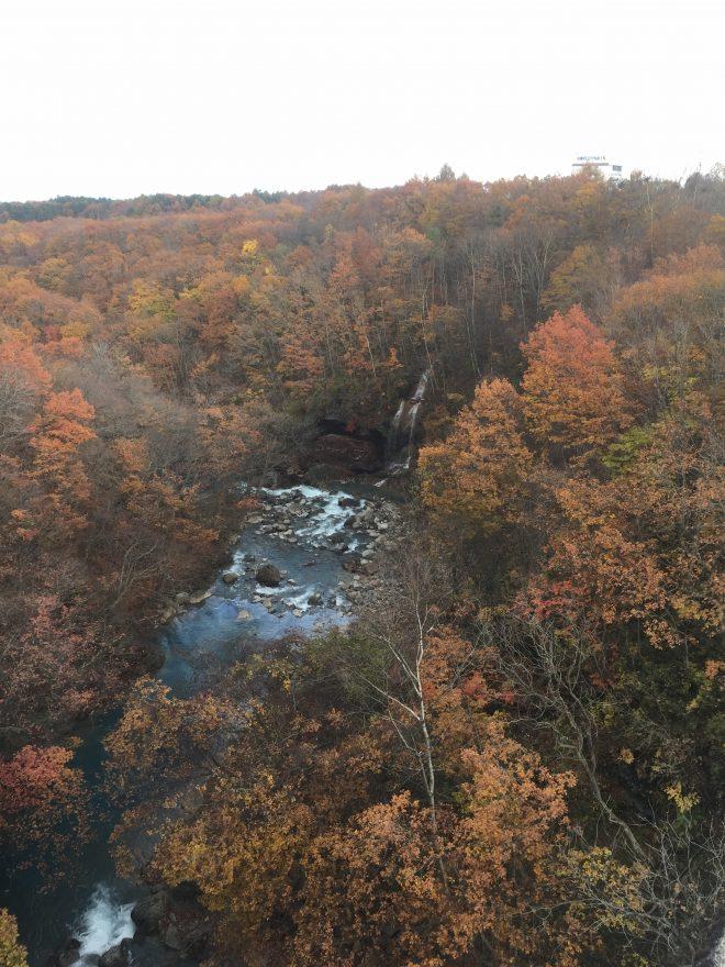 八幡平市の森の大橋からの風景。「森七滝」。紅葉と相まって綺麗!