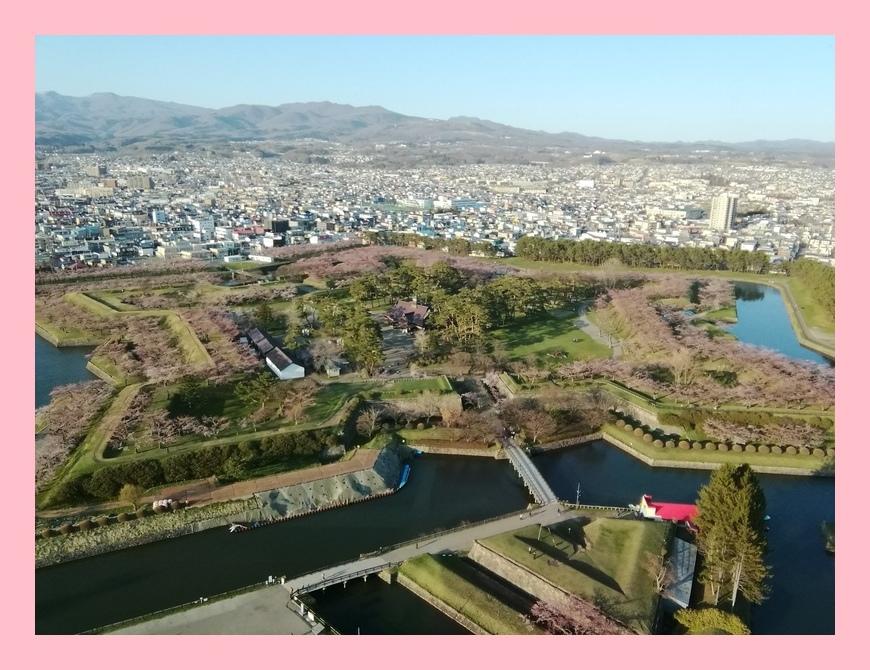 東北 桜旅 �V